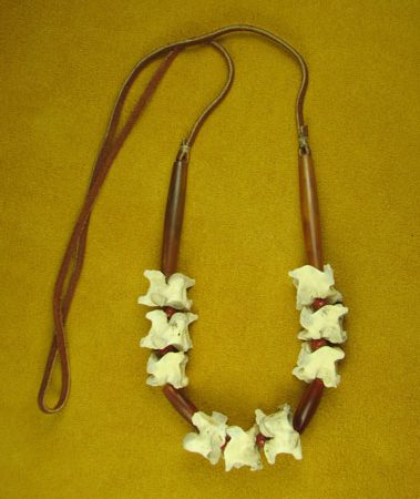 Burmese Python Vertebrae & Horn Hairpipe Necklace