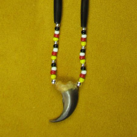 Single Bear Claw Four Directions Necklace